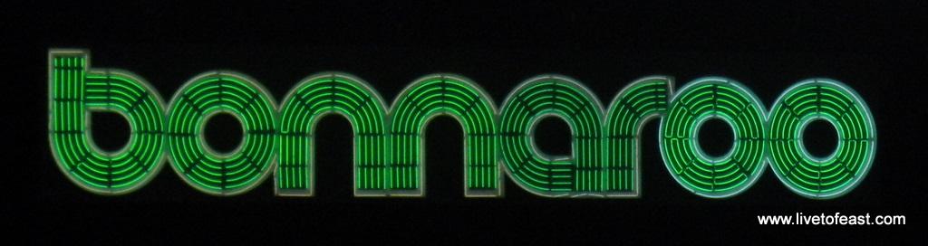 Bonnaroo What Stage logo